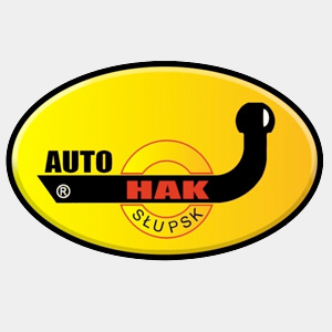 auto-hack